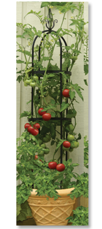 Tomato Tower Obelisk